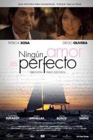 Ningun amor es perfecto