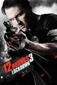 12 balas / 12 Rounds 3: Lockdown