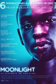 Luz de luna / Moonlight