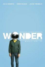 Wonder / Extraordinario
