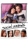 Amor y Disfunción / Social Animals