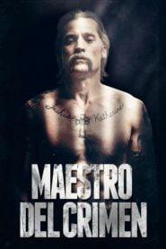 Maestro del crimen / Shot Caller