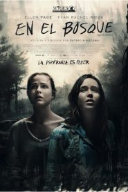 En el bosque / Into the Forest