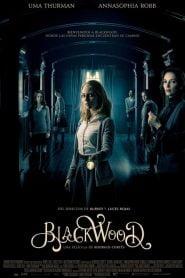 Blackwood / Down a Dark Hall
