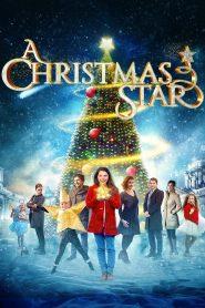 Una estrella de navidad / A Christmas Star