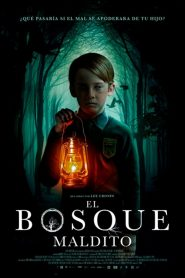 El bosque maldito (The Hole in the Ground)