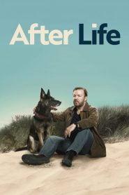 After Life: Más allá de mi mujer