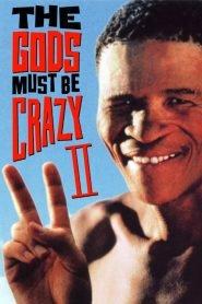 Los dioses deben estar locos 2