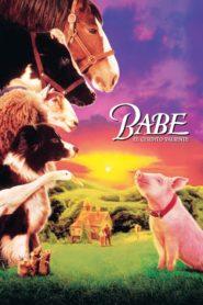 Babe El Cerdito Valiente / Babe, el puerquito valiente