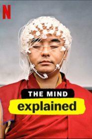 La mente, en pocas palabras: Temporada 1