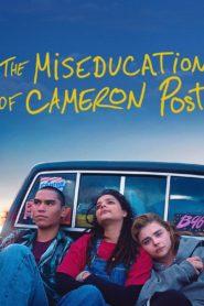 La (des)educacion de Cameron Post