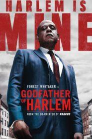 El padrino de Harlem: Temporada 1