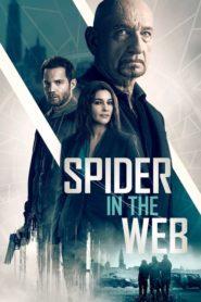 La trampa de la araña (Spider in the Web)