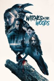 La noche de la bruja (Witches in the Woods)