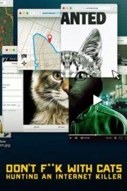 No te metas con los gatos: Un asesino en internet