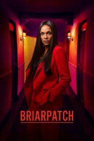 Briarpatch: Temporada 1