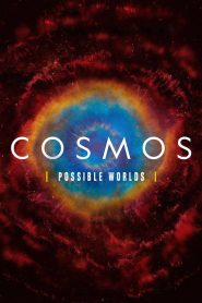 Cosmos: Temporada 2