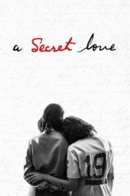 A Secret Love