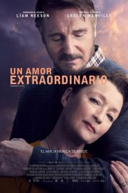 Un amor extraordinario (Ordinary Love)