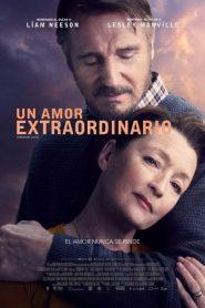 Un amor extraordinario (Ordinary Love)