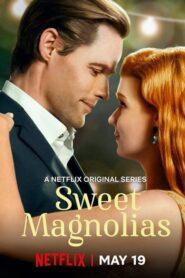 Dulces magnolias (Sweet Magnolias)
