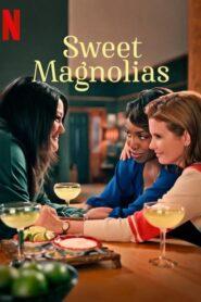 Sweet Magnolias: Temporada 1