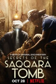 Los secretos de la tumba de Saqqara (Secrets of the Saqqara Tomb)