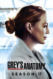 Anatomía de Grey: Temporada 17