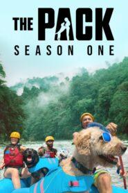 The Pack: Temporada 1