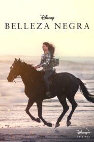 Belleza Negra (Black Beauty)