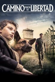 Camino hacia la libertad (Shepherd: The Hero Dog)
