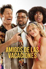 Amigos de las vacaciones / Amigos Pasajeros (Vacation Friends)